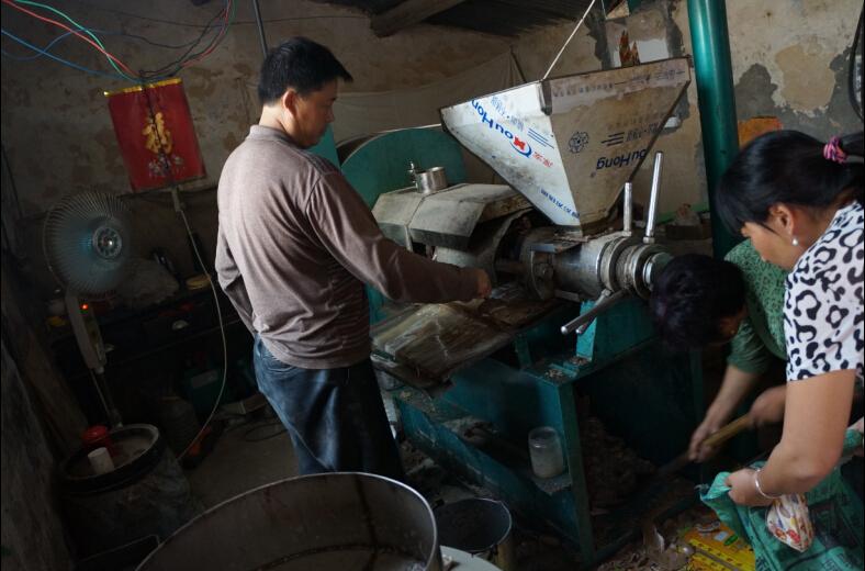河南康店榨油机生产线用户